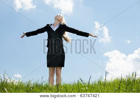 Happy Businesswoman In Grassland