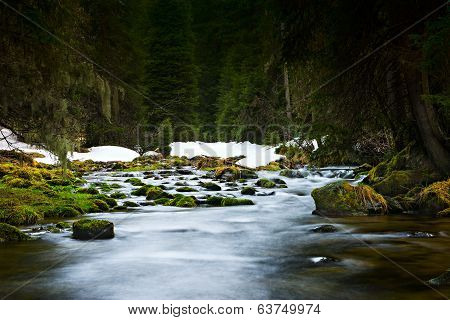 flowing blue water through green nature forest over rocks