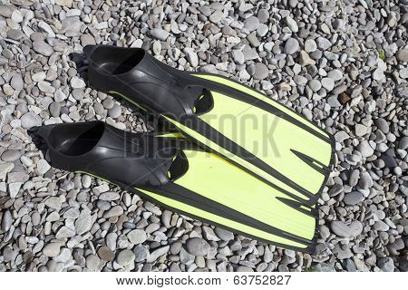 Flippers for diving.