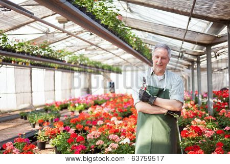 People at work in a florist's greenhouse