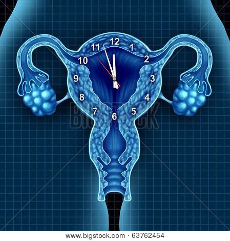 Biological Clock
