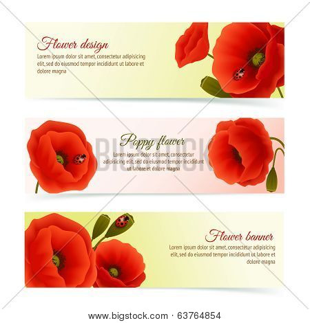 Poppy horizontal banner set