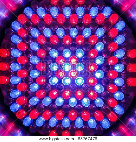 Led Light Bulb Close Up