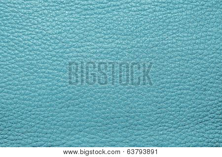 Abstract Painted Textures Of Skin Turquoise Color