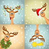 stock photo of caribou  - four funny reindeer - JPG