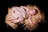 foto of manger  - Baby Jesus sleeping in the manger - JPG