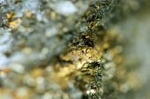 foto of bronze silver gold platinum  - Abstract background from a Crystal mineral - JPG