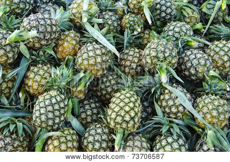 A lot of pineapple fruit background