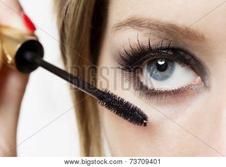 Eyeshadows. Eye shadow brush