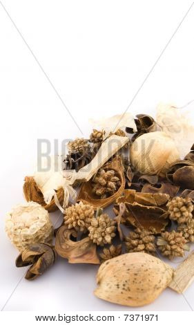 A Set Of Dried Herbs And Spices