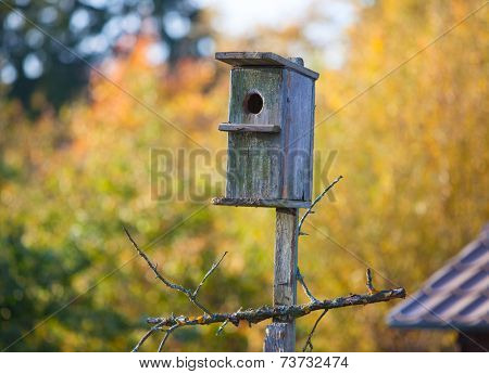 Old birdhouse on trees background.