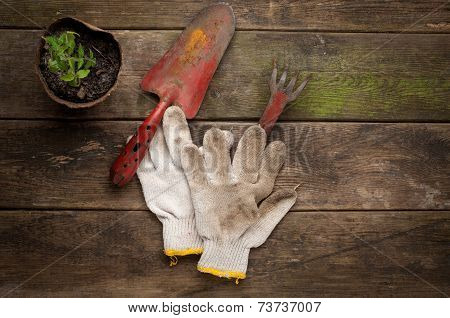 Gardening tools on old wooden background