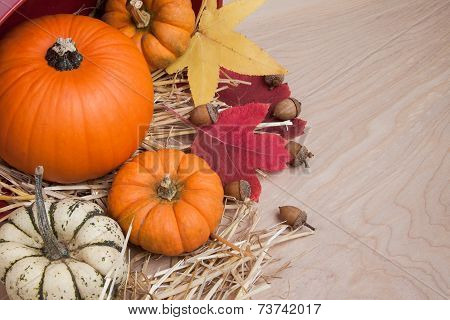 Fall Squash With Acorns On Wood