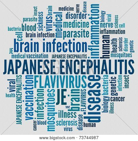 Japanese Encephalitis in word collage