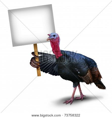 Turkey Bird Sign poster