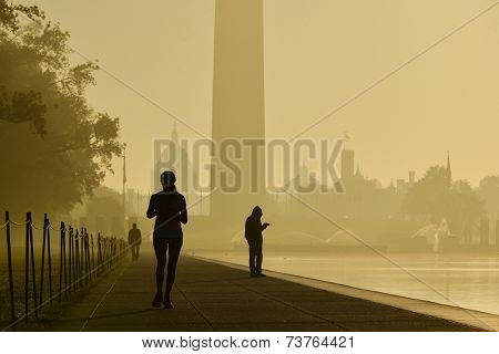 Morning haze and silhouettes in National Mall - Washington DC, United States of America