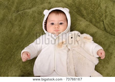 beautiful baby girl with sheep teddy
