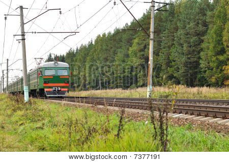 Electric Train In The Forest