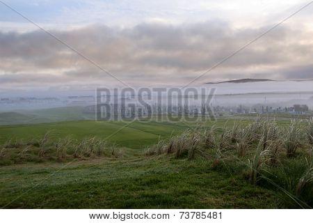 Fogy Ballybunion Golfcourse Graveyard
