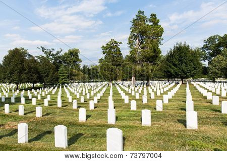 headstones in arlington National Cemetery, Washington DC, united states