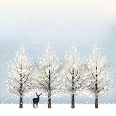 pic of winter trees  - Holiday background in winter with snowy trees and reindeer - JPG