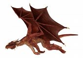 foto of dragon  - 3D digital render of a flying red fantasy dragon isolated on white background - JPG