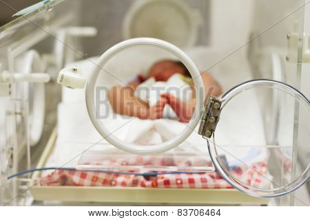 Newborn Baby Sleeping  Inside Incubator