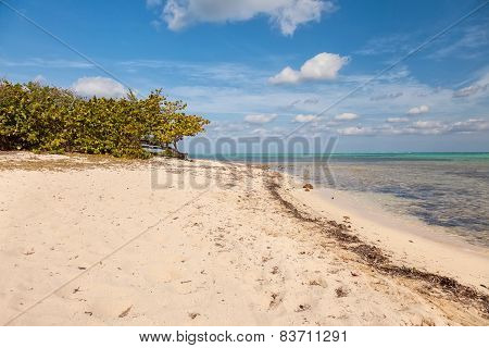 Beach On Cayman Islands