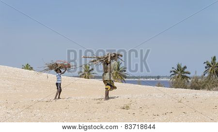 Malika, Senegal - July 31, 2014: Unidentified mother and son carrying filao branches on their head a
