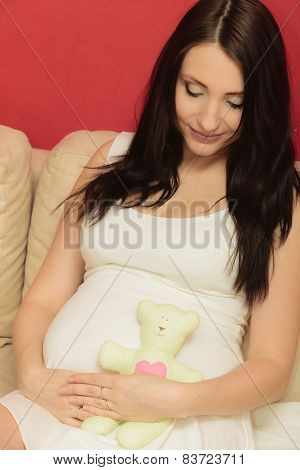 Pregnant Woman Expecting Baby With Teddy Bear