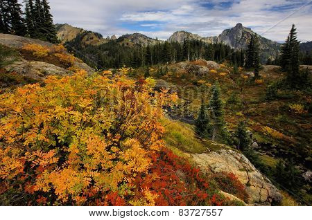 Alpine Autumn