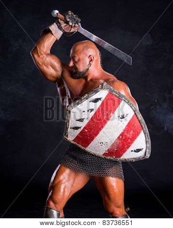 Handsome Muscular Ancient Warrior