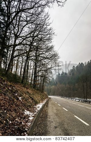 New Asphalt Auto Road In Alsace Mountains