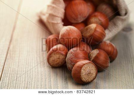 sack bag full of hazelnuts, rustic style photo