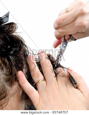 Cutting Hair Woman.
