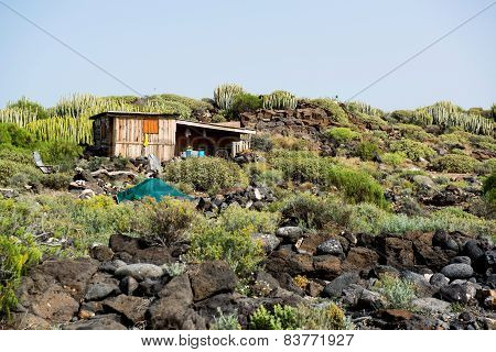 Self-made Hovel In A Tropics