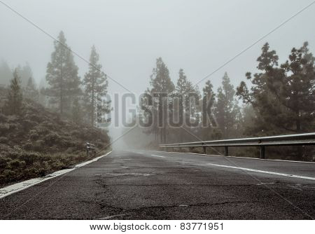 Foggy Road To Volcano Teide