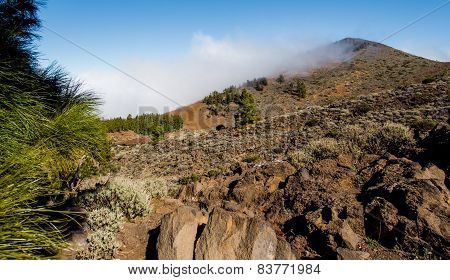 Northern Slope Of Volcano Teide. Tenerife, Canary Islands. Spain