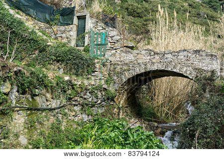 Stone Bridge In The Trail