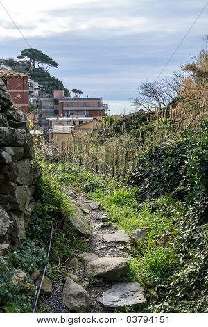 Hiking Trail In Cinque Terre