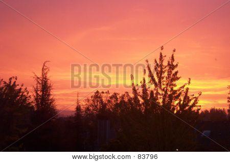 Oregon Sunrise