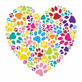 pic of paw  - Illustration of heart paw print on a white background - JPG