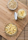 picture of soybean sprouts  - Portion of preserved Soy Sprouts  - JPG
