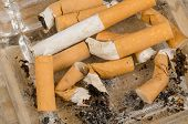 picture of butts  - Many filter cigarette butts filling a small ashtray - JPG