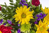 pic of carnations  - Bouquet of colorful spring flowers isolated on white featuring yellow daisies red carnations and purple violets - JPG