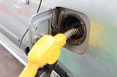 foto of petrol  - fueling the petrol at the Petrol station - JPG
