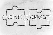 picture of joint  - the words Joint Venture written on 2 matching pieces of a jigsaw puzzle - JPG