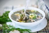 image of sorrel  - sorrel soup with meatballs and eggs in a bowl - JPG