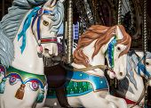 pic of merry-go-round  - Merry go around horse at a country fair in the United States - JPG