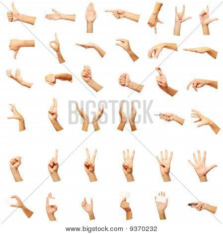 Hands Set